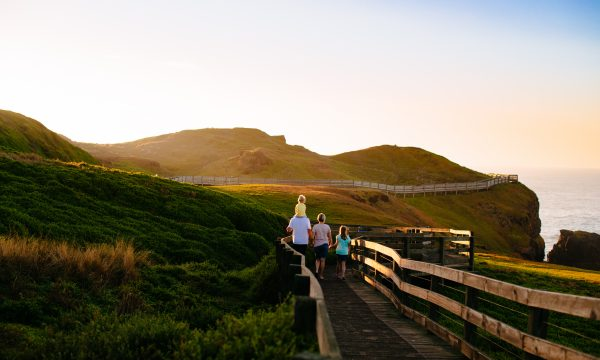 phillip island tour boardwalk at the nobbies