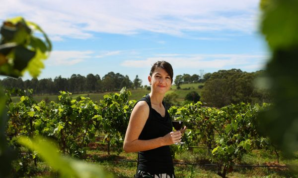 Enjoy structured wine tastings at three wineries hunter valley wine tours