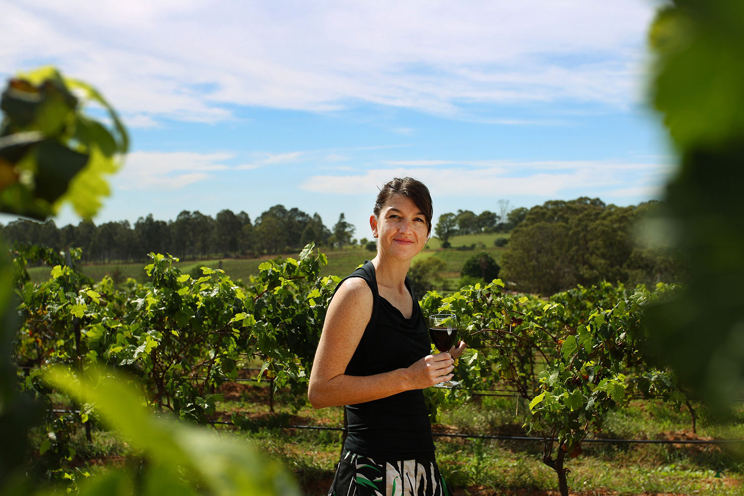 Enjoy structured wine tastings at three wineries hunter valley wine tour