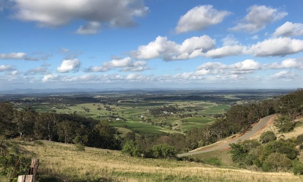 See stunning scenery on your way to the hunter valley wine tour