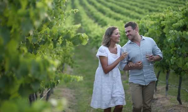 hunter valley wine tours wine tastings