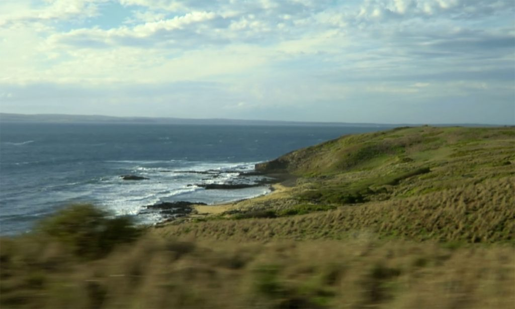 phillip-island-penguins-tour