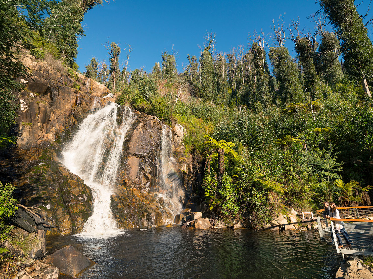 melbourne snow tours visits beautiful waterfalls